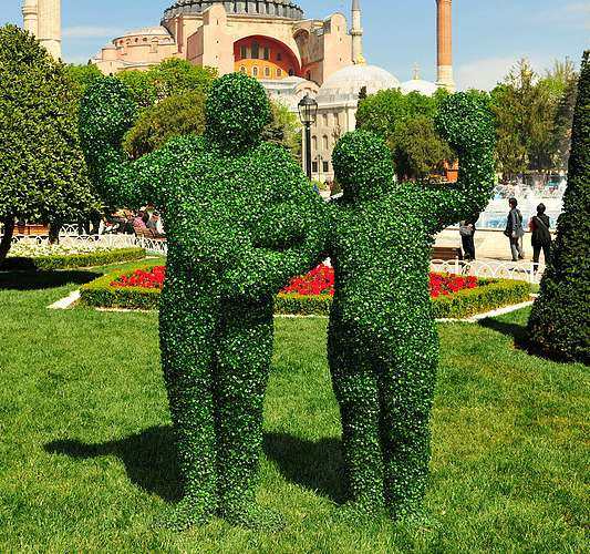 Book Living Topiary for your wedding.